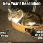 Burning resolutions: lose weight, conquer clutter. So what else is new?