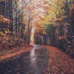 November: The Most Depressing Month?